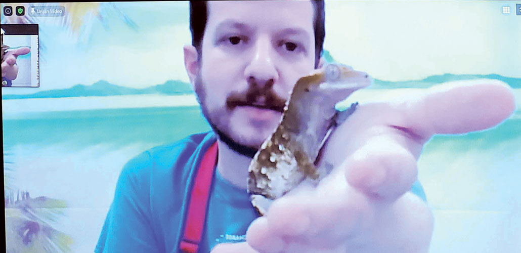a photo of a man holding a crested gecko up to the viewer