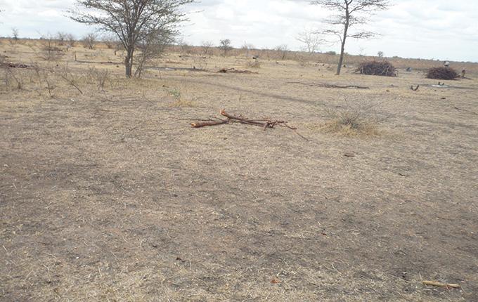 dry land in Tanzania's Shinyanga region