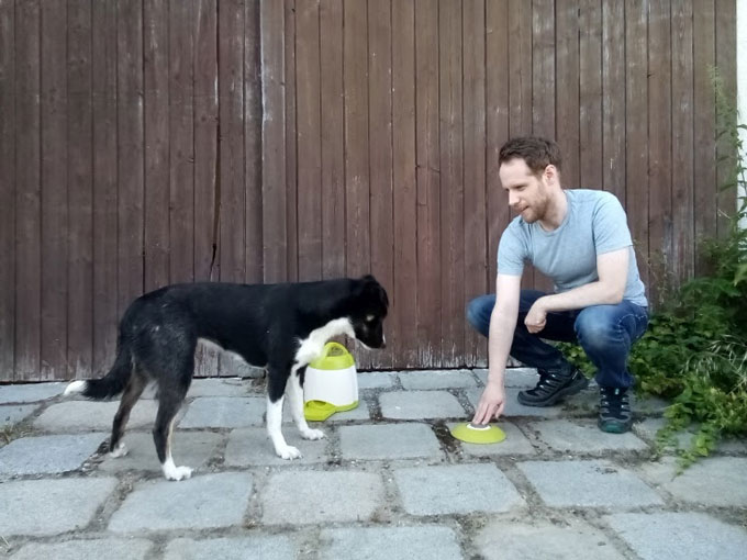 human man giving instructions to a dog